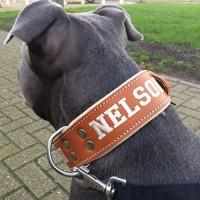 Hondenhalsband leer op maat gemaakt 50mm breed