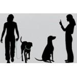 Hond training en africhten