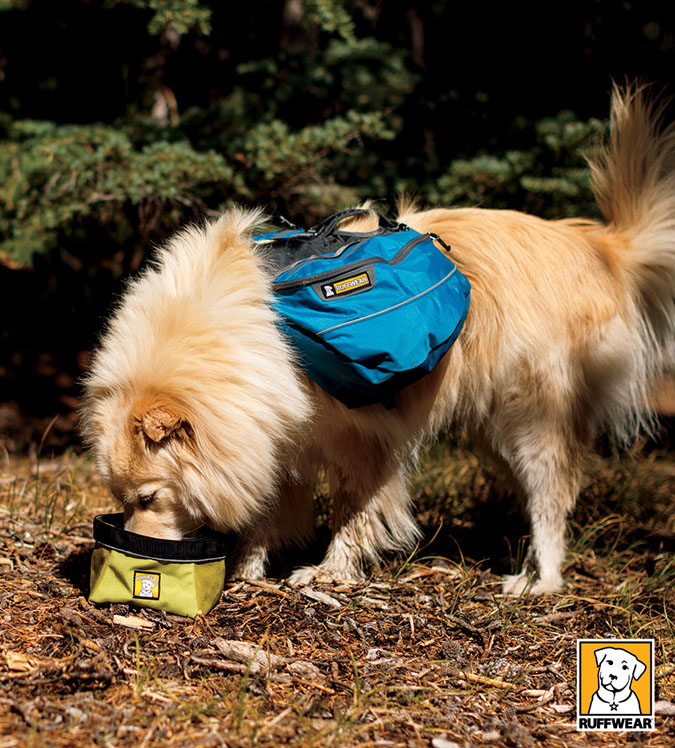 how to put on ruffwear approach pack